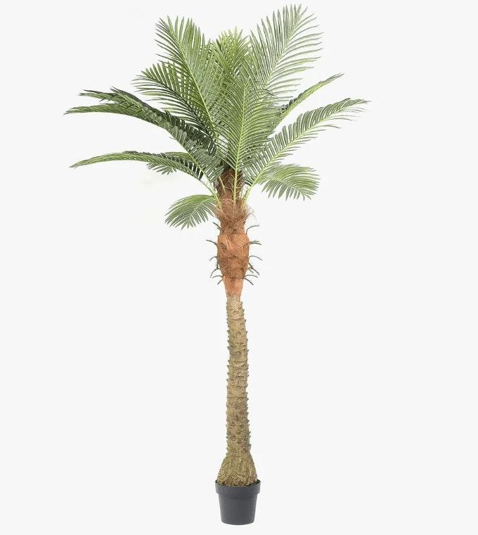 palmeira artificial da loja do gato preto
